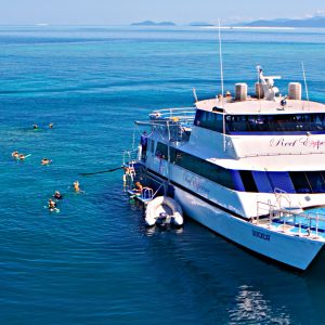 Great Barrier Reef Tours on Reef Experience