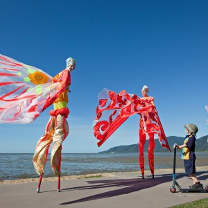 join in the fun at Cairns Festival