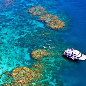 Cairns Great Barrier Reef and Dinner Cruise