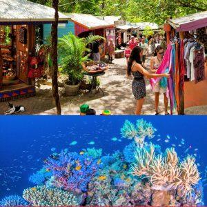 Kuranda Tour and Great Barrier Reef
