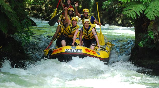 Select from our fantastic tour packages.