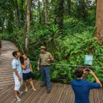 Cairns Sight Seeing tours  Cairns outstanding destinations  Discover Cairns best sightseeing tours, Daintree Rainforest, Kuranda, Atherton Tablelands, Chillegoe Caves, Cooktown, Port Douglas and more  Outstanding destinations on excellent tours