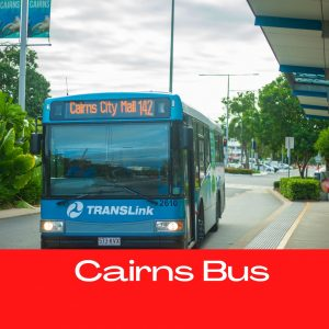 Cairns Bus
