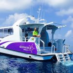 Half day reef tours Cairns