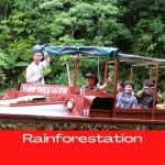 Rainforestation