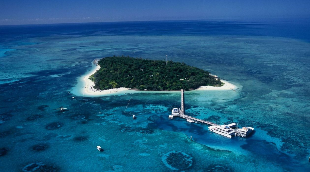 top-5-snorkelling-tours-cairns