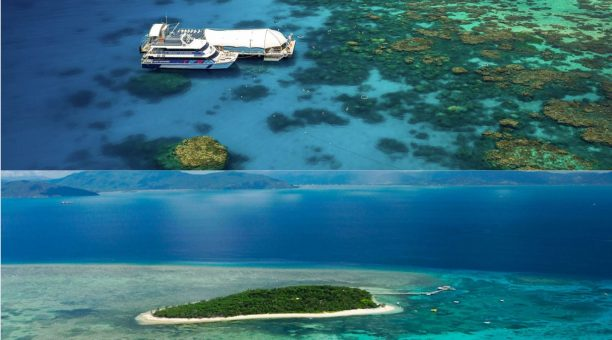 Great Barrier Reef and Green Island Tours