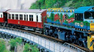 Kuranda Railway, Kuranda Village Markets and Rainforestation