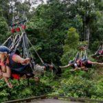 AJ Hackett Giant Jungle Swing
