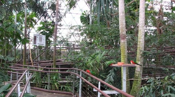 Cairns Wildlife Dome, North Queensland Australia