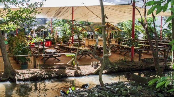 Wildlife Habitat Cafe