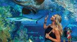 Green Island and Cairns Aquarium