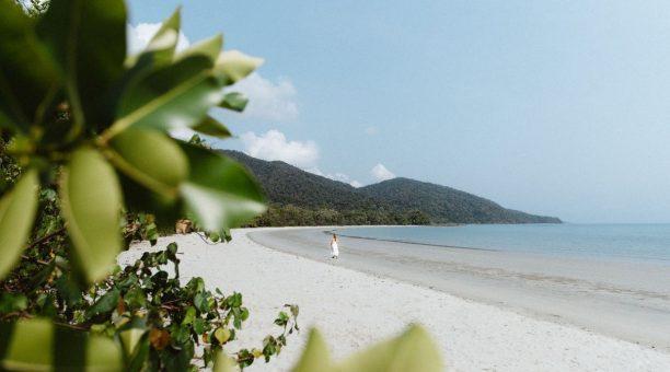 Take Long Walks on Tropical Beaches